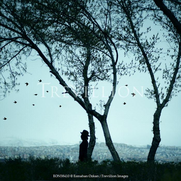 Esmahan Ozkan SILHOUETTE OF WOMAN UNDER TREE Women