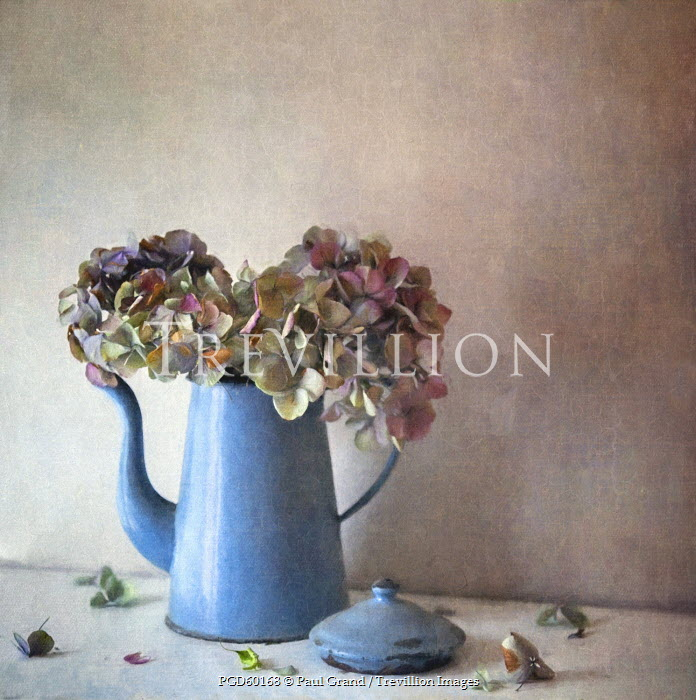 Paul Grand STILL LIFE OF FLOWERS IN BLUE TEAPOT Flowers