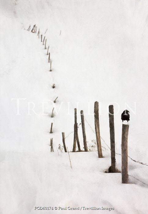 Paul Grand SNOW DRIFT COVERED FENCE Snow/ Ice