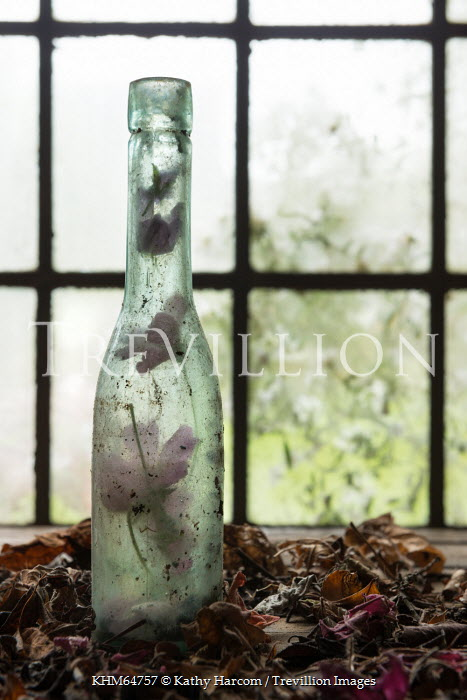 Kathy Harcom FLOWERS IN DIRTY GLASS BOTTLE INDOORS Miscellaneous Objects