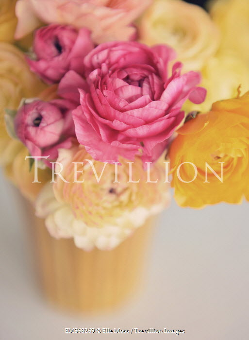 Elle Moss VASE FULL OF FLOWERS Flowers