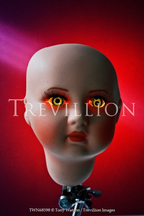 Tony Watson SINISTER DOLL HEAD Miscellaneous Objects