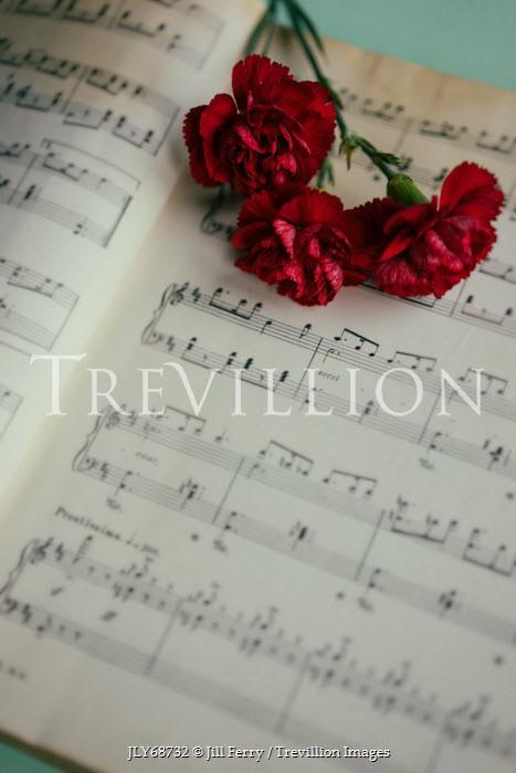 Jill Ferry RED FLOWERS ON SHEET MUSIC Musical Instruments