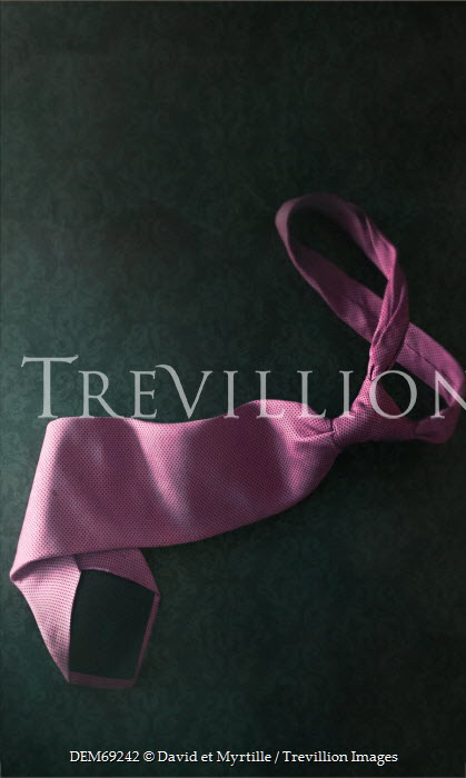 David Pairé CLOSE UP OF PINK TIE INDOORS Miscellaneous Objects
