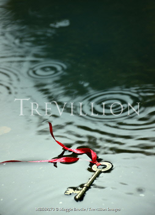 Maggie Brodie KEY ON RIBBON DROPPED IN PUDDLE Miscellaneous Objects