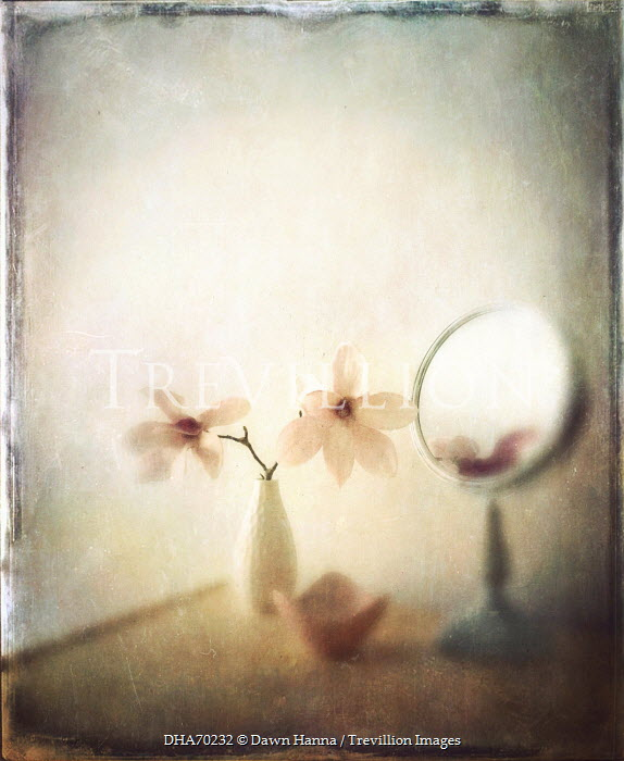 Dawn Hanna VASE OF FLOWERS AND MIRROR INDOORS Flowers