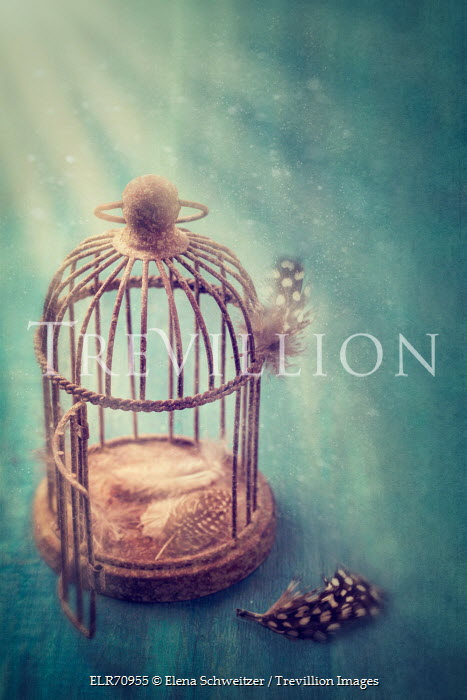 Trevillion Images The Ultimate Creative Stock Photography Elena