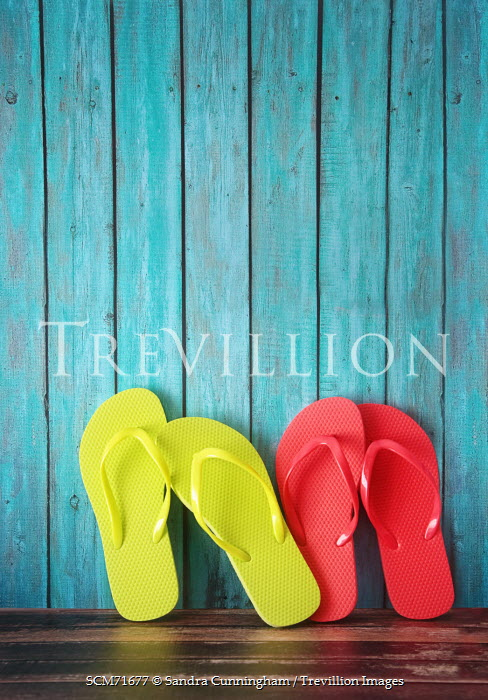 Sandra Cunningham RED AND YELLOW FLIP FLOPS Miscellaneous Objects