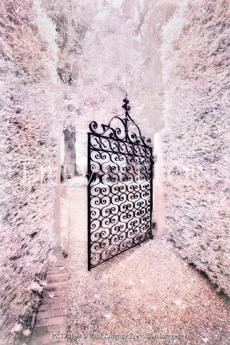 Paul Knight OPEN ORNATE GATE IN GARDENS Gates