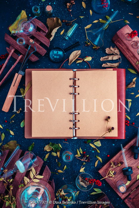 Dina Belenko TEST TUBES, RED BERRIES AND OPEN NOTEBOOK Miscellaneous Objects
