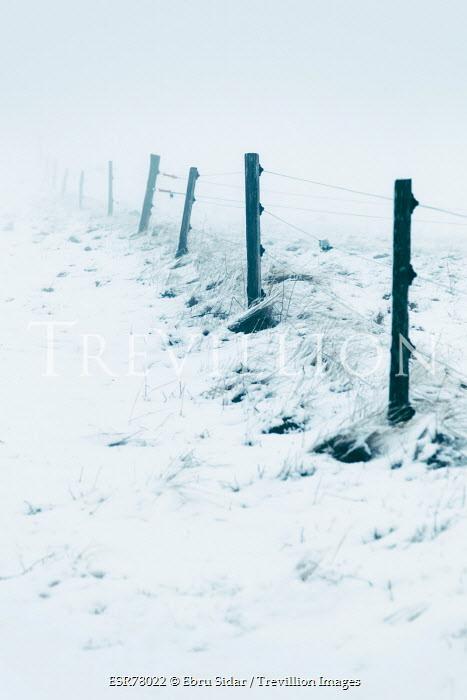 Ebru Sidar FENCE POSTS IN SNOWY COUNTRYSIDE Snow/ Ice
