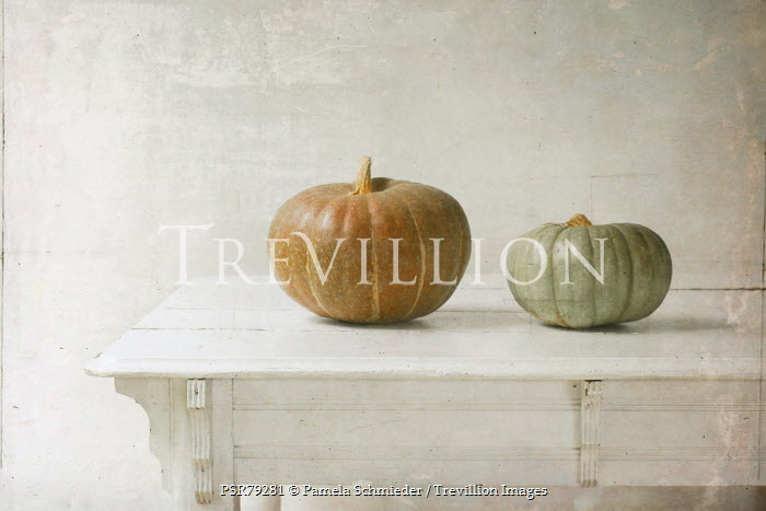Pamela Schmieder SQUASHES ON WHITE WOODEN TABLE Miscellaneous Objects