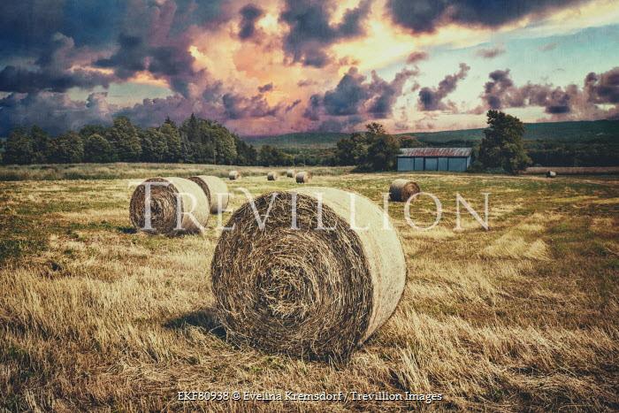 Evelina Kremsdorf FARM HAY BALES IN CLOUDY FIELD Fields