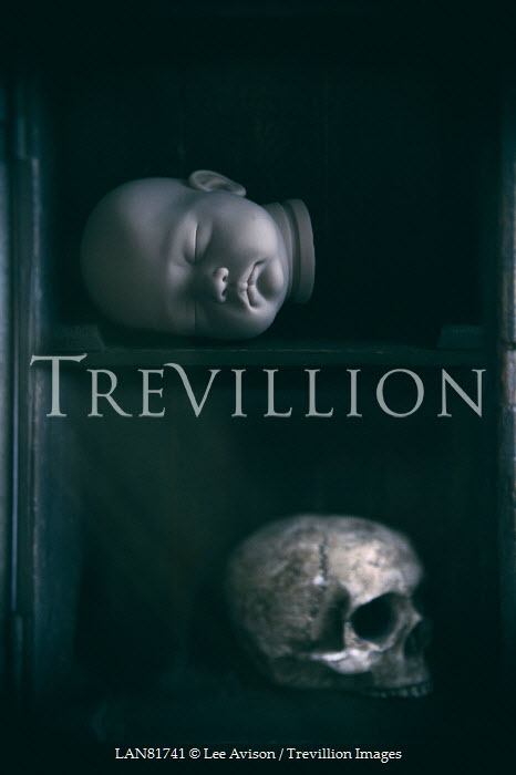 Lee Avison head of a baby doll and human skull Miscellaneous Objects