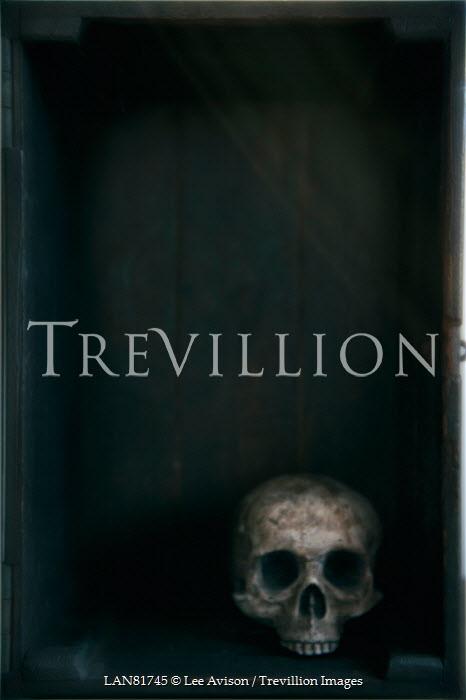 Lee Avison human skull in a wooden box Miscellaneous Objects