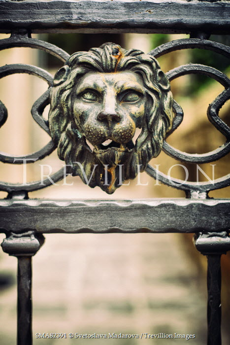 Svetoslava Madarova ORNATE GATE WITH HEAD OF LION Gates