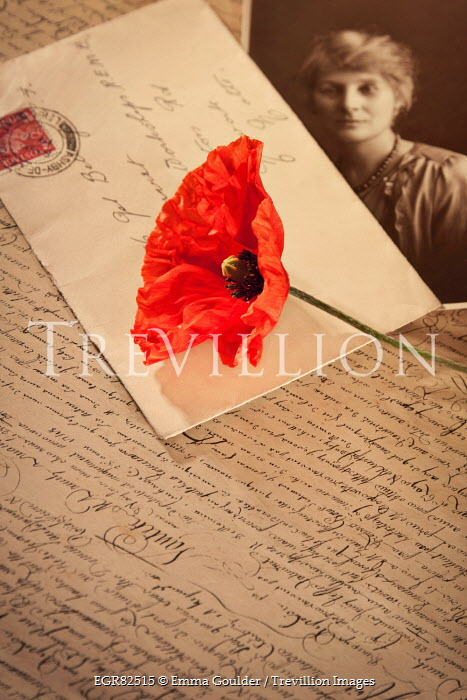 Emma Goulder OLD PHOTOGRAPH WITH POPPY AND LETTERS Miscellaneous Objects