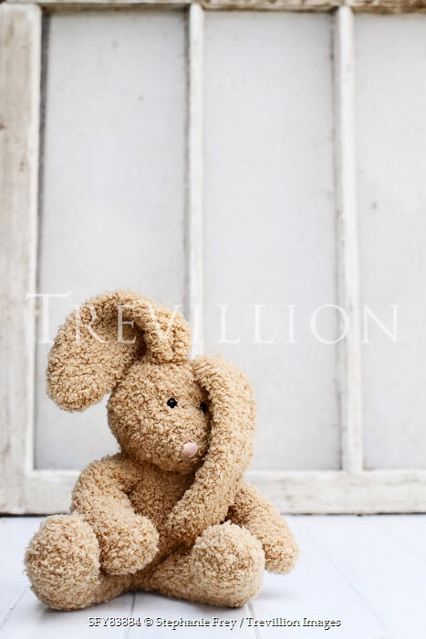 Stephanie Frey little stuffed bunny sitting by old window Miscellaneous Objects