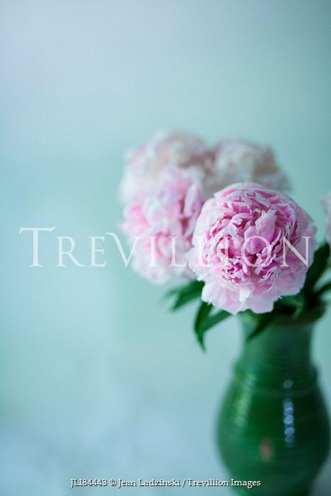 Jean Ladzinski PASTEL PINK FLOWERS IN GREEN VASE Flowers