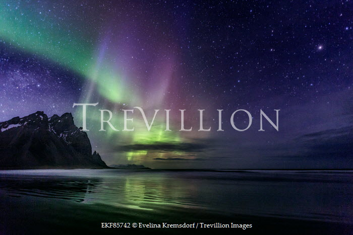 Evelina Kremsdorf northern lights in night sky over sea Seascapes/Beaches
