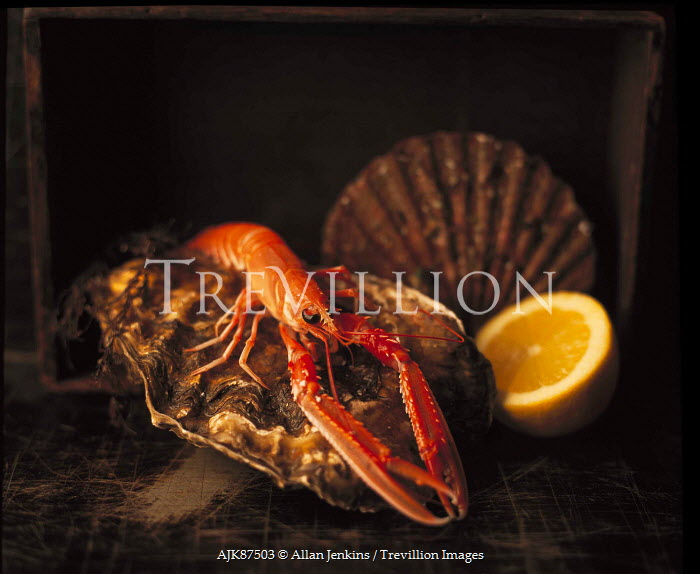 Allan Jenkins CRAYFISH, SCALLOP, OYSTER AND LEMON ON TABLE Miscellaneous Objects