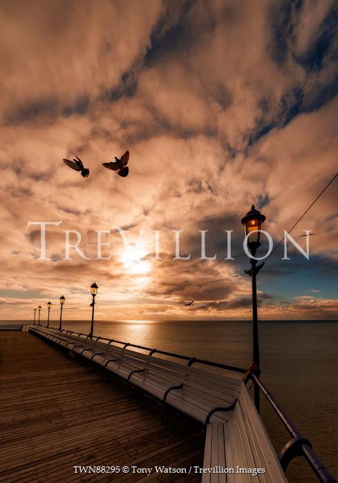 Tony Watson EMPTY PROMENADE WITH BIRDS AT SUNSET Seascapes/Beaches