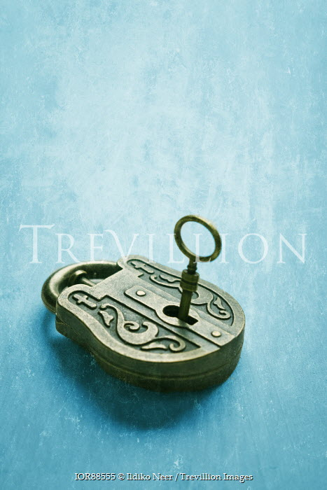 Ildiko Neer Ornate padlock with key Miscellaneous Objects