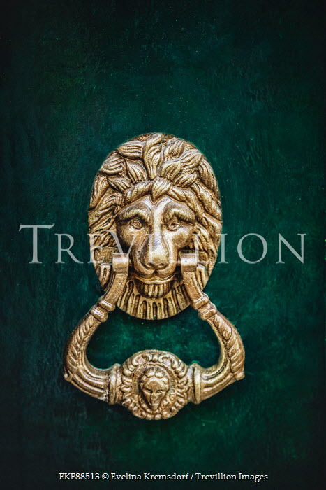 Evelina Kremsdorf GOLD LION DOOR KNOCKER Building Detail