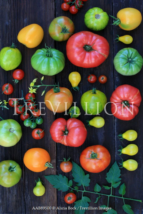 Alicia Bock COLOURFUL VEGETABLES ON TABLE Miscellaneous Objects