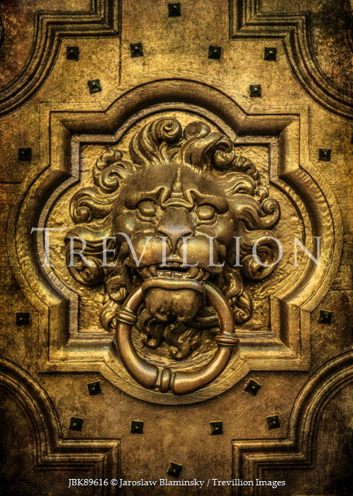 Jaroslaw Blaminsky ORNATE GOLD LION HEAD KNOCKER Building Detail