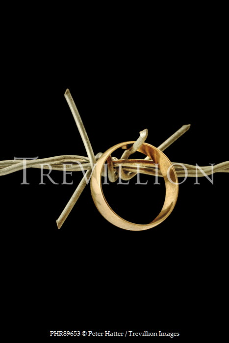 Peter Hatter GOLD WEDDING RING ON BARBED WIRE Miscellaneous Objects