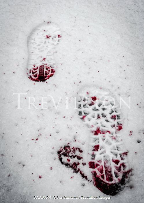 Des Panteva BLOODY FOOTPRINTS IN SNOW Body Detail