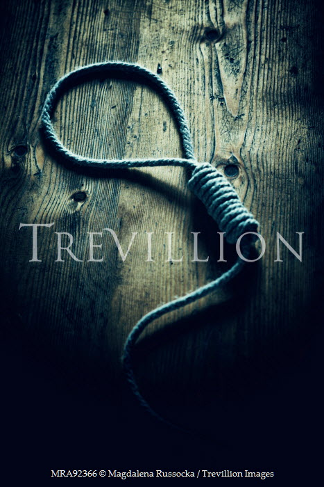 Magdalena Russocka ROPE NOOSE LYING ON WOOD Weapons