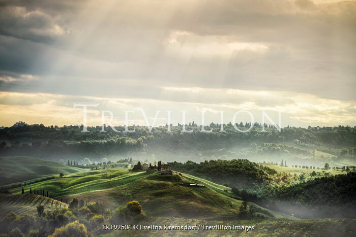 Evelina Kremsdorf ITAIAN LANDSCAPE IN SUNLIGHT Fields