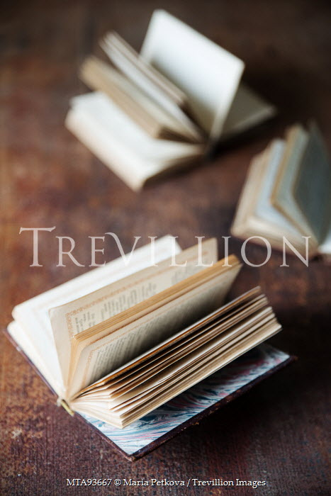 Maria Petkova OLD BOOKS LYING OPEN ON TABLE