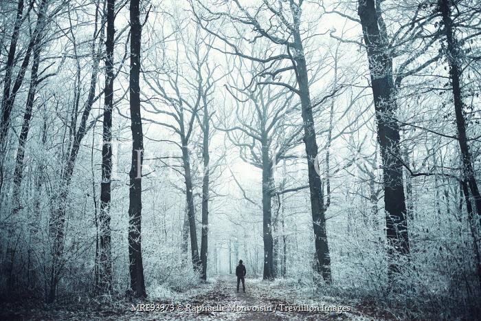 Raphaelle Monvoisin MAN STANDING IN WINTRY FOREST Men