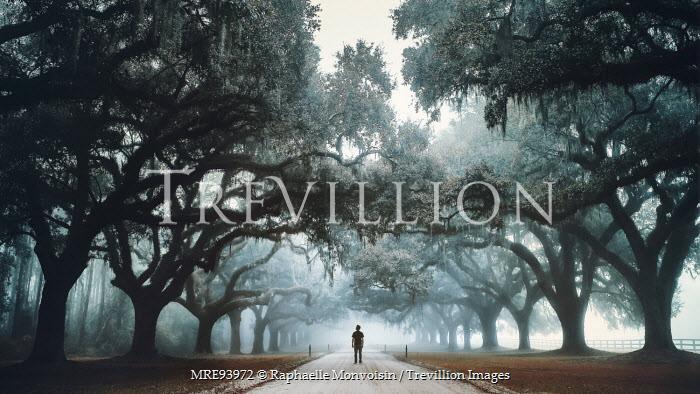 Raphaelle Monvoisin MAN STANDING IN AVENUE OF TREES Men