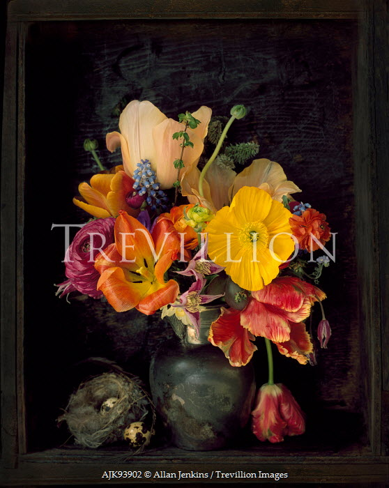 Allan Jenkins FLOWERS IN VASE WITH EGGS AND NEST Flowers