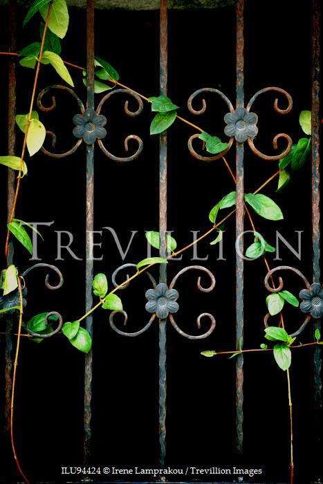 Irene Lamprakou RUSTY METAL GATE WITH GREEN WEEDS Gates