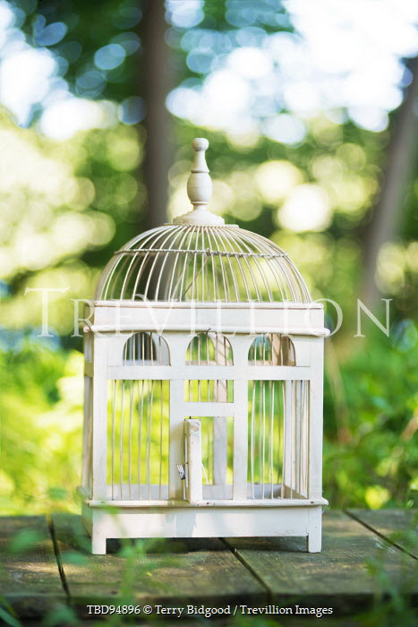 Terry Bidgood EMPTY BIRDCAGE ON GARDEN TABLE Miscellaneous Objects