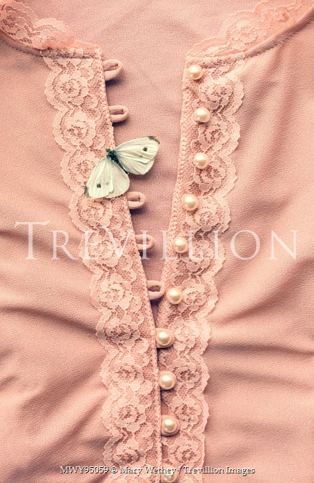 Mary Wethey PINK DRESS WITH WHITE BUTTERFLY Insects