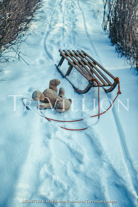 Magdalena Russocka teddy bear by sled in snow Miscellaneous Objects