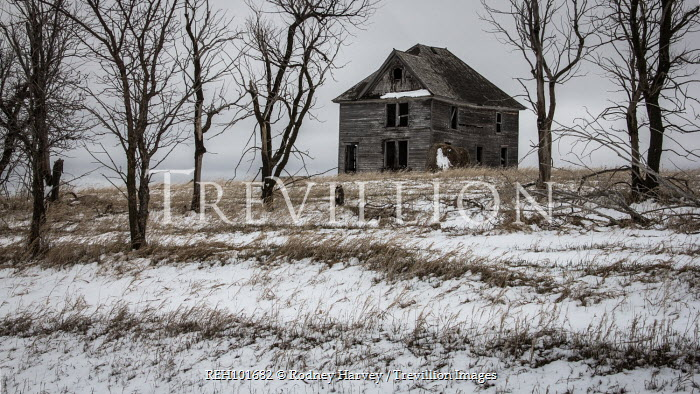 Rodney Harvey DERELICT WOODEN HOUSE IN WINTRY COUNTRYSIDE Houses