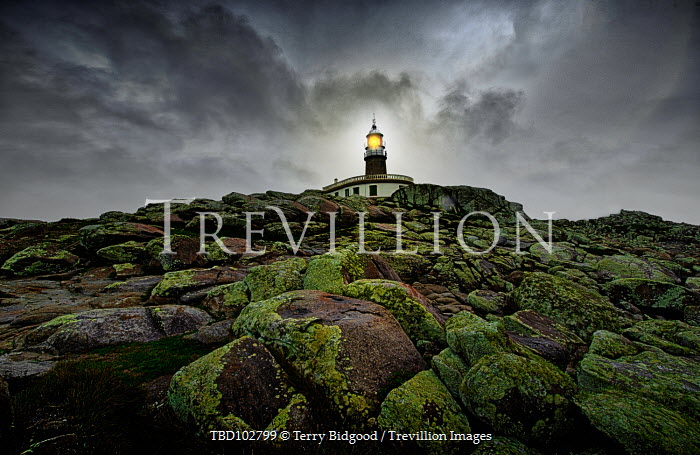 Terry Bidgood LIGHTHOUSE WITH ROCKS AND SEAWEED Miscellaneous Buildings