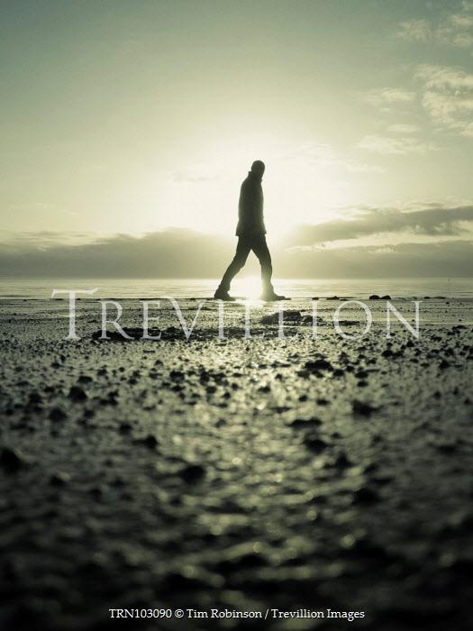 Tim Robinson SILHOUETTED MAN WALKING ON BEACH AT DUSK Men