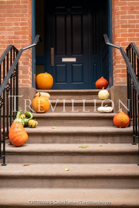 Colin Hutton PUMPKINS ON STEPS OUTSIDE DOOR Houses