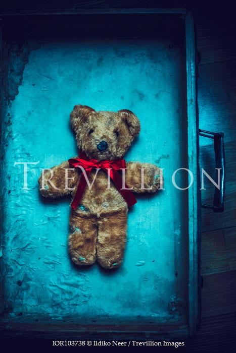 Ildiko Neer Teddy bear in old suitcase