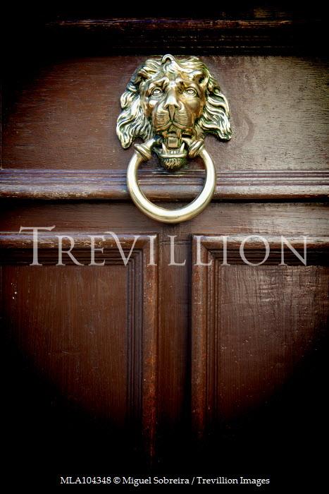 Miguel Sobreira GOLD LION HANDLE ON WOODEN DOOR Building Detail