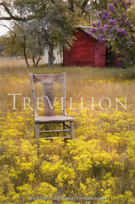 Jill Battaglia CHAIR AND SHED IN MEADOW WITH FLOWERS Miscellaneous Objects