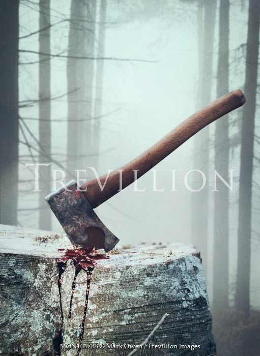 Mark Owen BLOODY AXE IN FOGGY FOREST Miscellaneous Objects